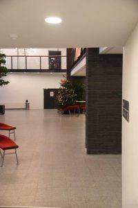 Juletræ i forhal